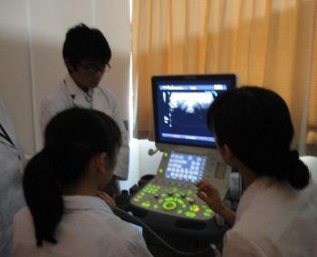 超音波(エコー)検査で自分の甲状腺をみてみました